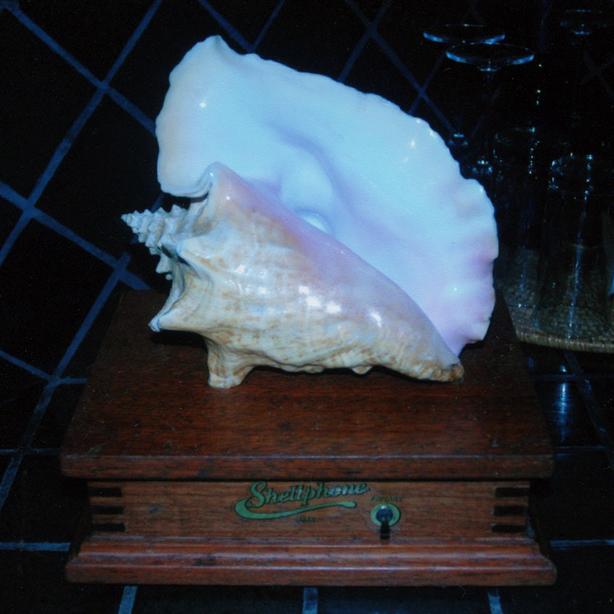 blancaneaux shell phone